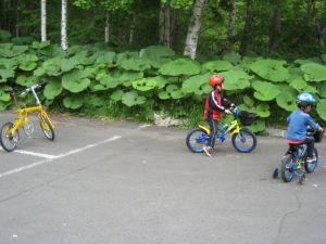 子供の自転車練習