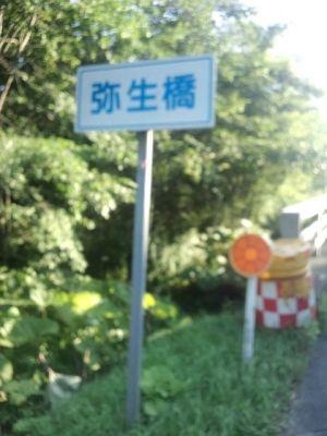 弥生橋で300km!