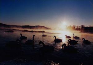 2月の塘路湖