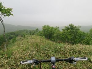 濃霧の釧路湿原