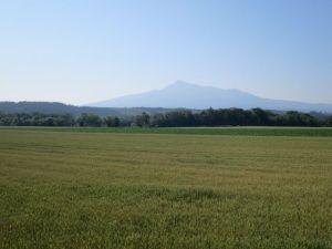 麦と斜里岳