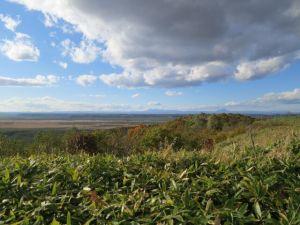 今日の釧路湿原