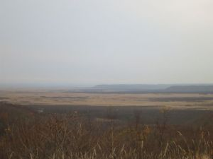 どんよりした空気の釧路湿原