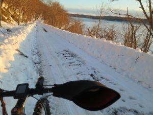 除雪された林道