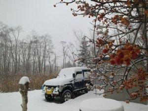 2016の大雪w