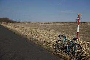 緑色の牧草地を早く見たい