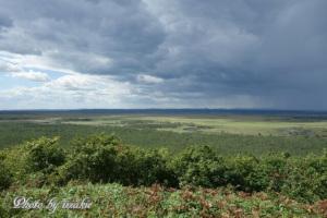 展望台から望む釧路湿原