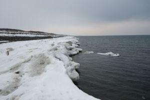 遥か沖に流氷が見えました