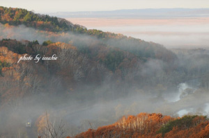 朝霧が漂う釧路湿原