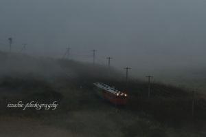 霧の量とか調節出来たらいいのになぁ~(≧◇≦)