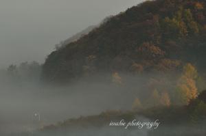 霧の中を行くキハ54