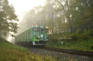 道東 森の恵み ラッピング列車