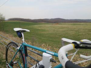 緑色になってきた牧草地